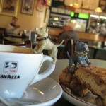 """A snack, or """"Uno spuntino""""!!!  So Gray & Nameless went to one of the many Italian Coffee Houses that North Beach is famous for, and shared their first cappuccino & biscotti!"""