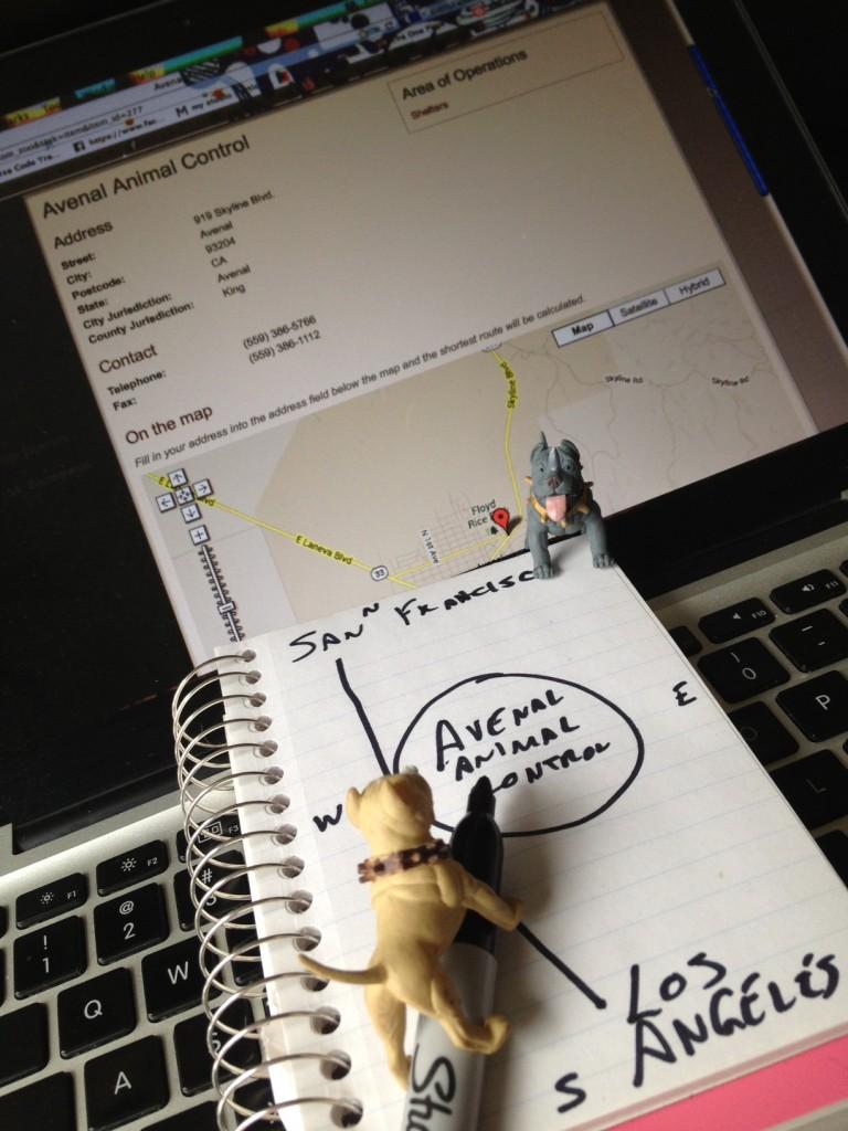 Making a plan...