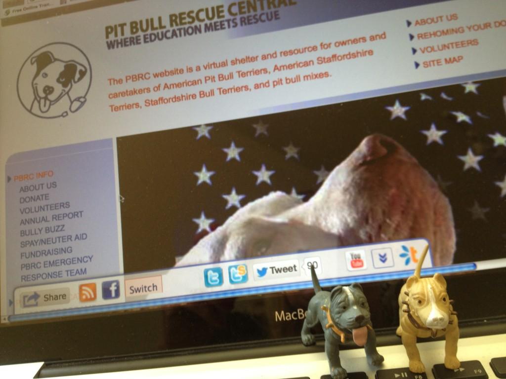 rescue_page